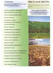 ГЕРБЕЦИД ЗЕРНОВ и КУКУРЗ Расход 0, 6-0.8л.150р/Га