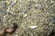 Продается корм из дробленых семян подсолнечника