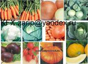 овощи купить морковь свекла,  лук