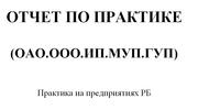 Отчет по практике.Любой вид (оао.ооо.ип.муп.гуп).ДИПЛОМ
