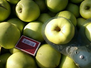 Плодоносящий яблоневый сад в Крыму 4, 8 Га (документы готовы)